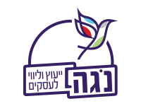 עיצוב לוגו ליועצת העסקית נגה גולסט